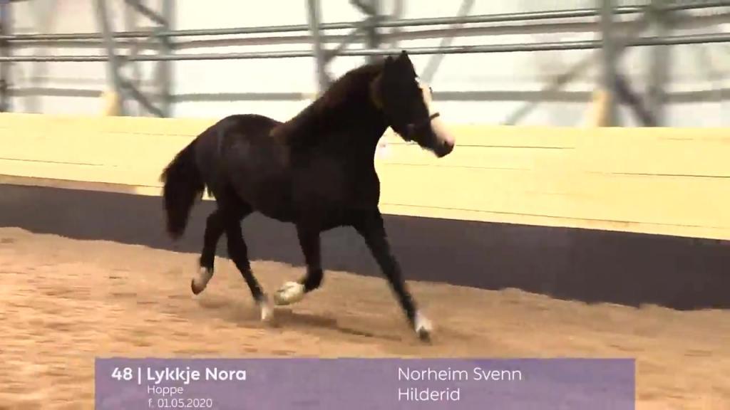 # 48 - Lykkje Nora